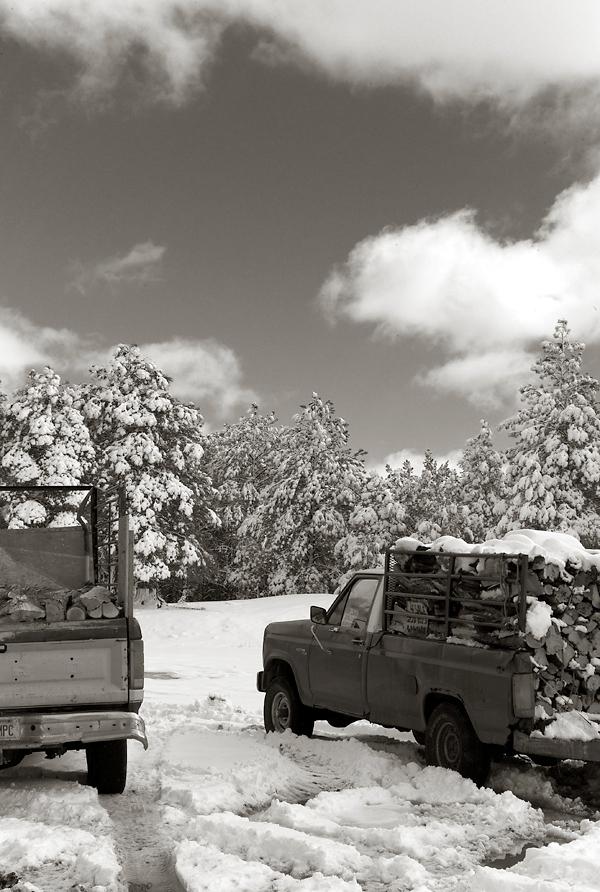 Woodtrucks